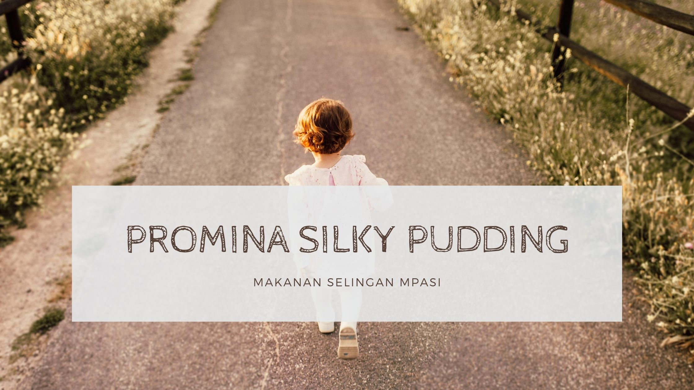 Promina Silky Pudding Chocolate